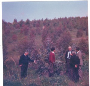 colline su cui insiste la forestazione produttiva con amministratori comunali di Francavilla in visita nel 1982